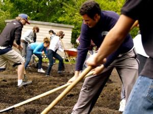 Coltivare l'orto in azienda negli Stati Uniti contro la crisi economica