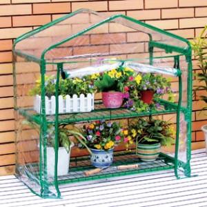 proteggere le piante dal freddo gratis