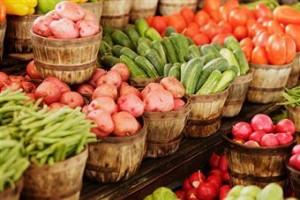 Classificazione ortaggi ortaggi coltivare l 39 orto for Piante da bulbo