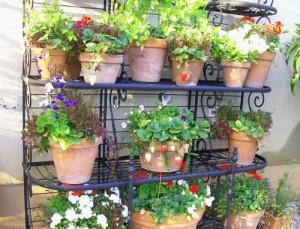 Vaso balcone – Vaso orto « Coltivare l\'orto